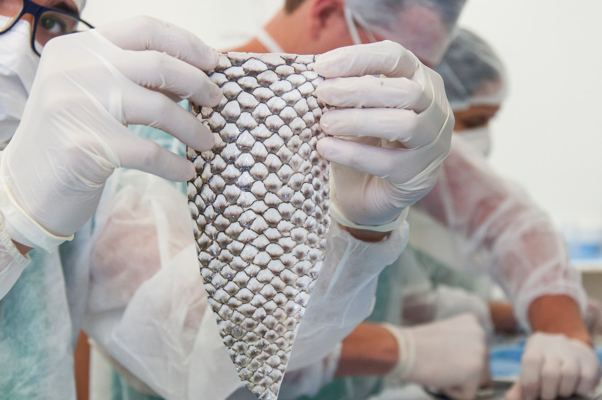 fish-skin-trans2